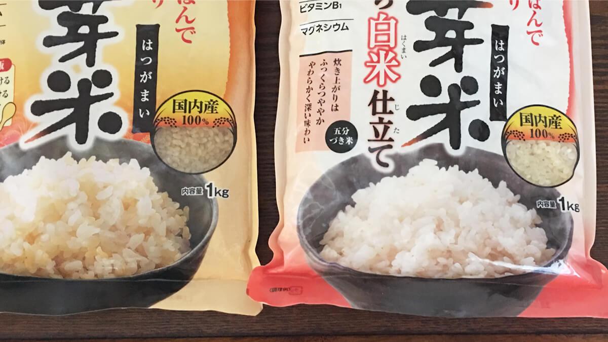 ふつうの発芽米とふっくら白米仕立ての色の比較