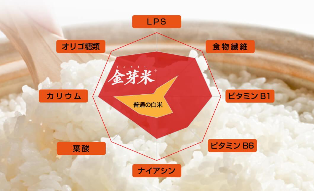 金芽米と白米と玄米の栄養価