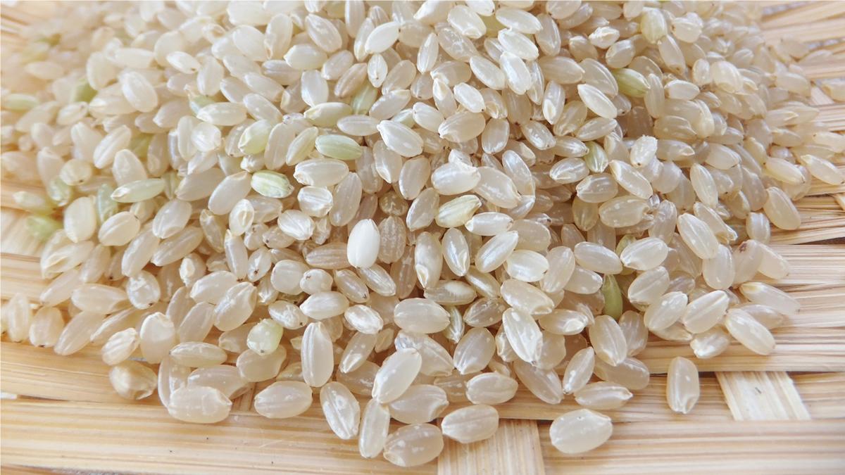 はじめての【玄米】。やさしく、わかりやすく。