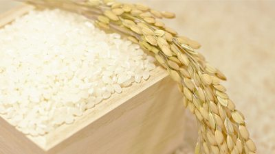 分づき米のイメージ